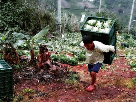 Meet the farmers 🙂