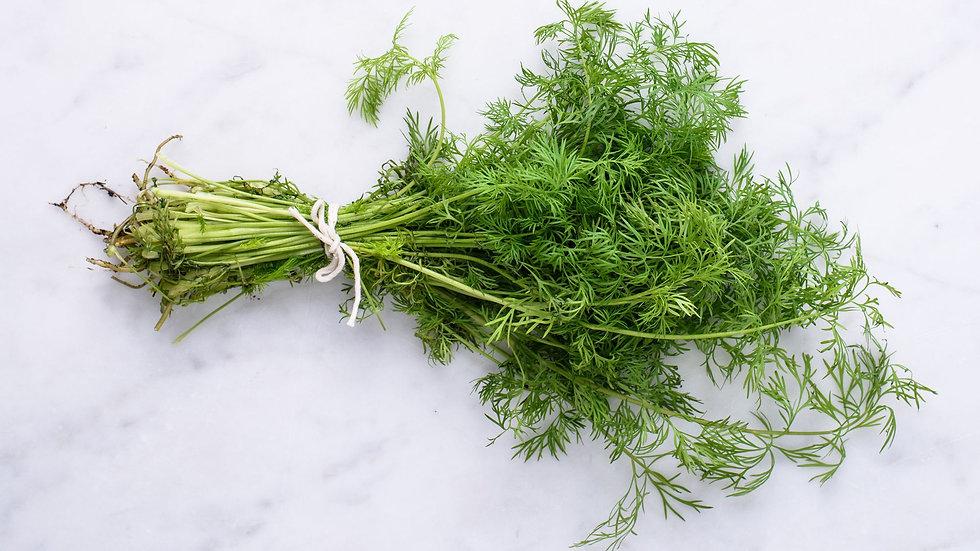 Organic Dill (50g)