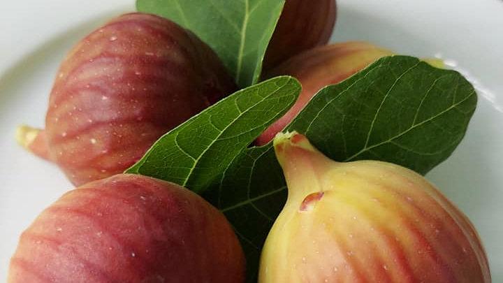 Fig (500g)