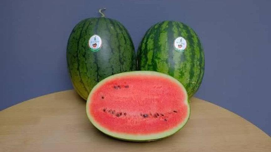 Organic watermelon (1.7-2.2kg)