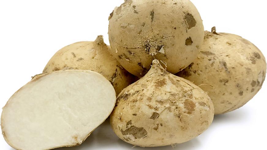 Organic Jicama (500g)