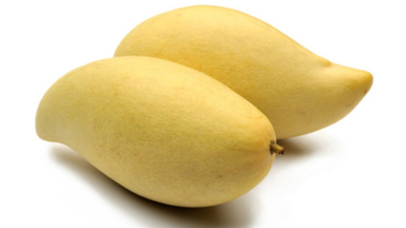 Organic Mango (Nam dok Mai) ~ (300g)