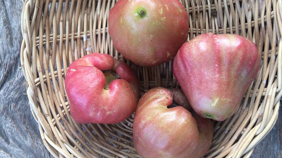 Organic Rose-apple (300g)