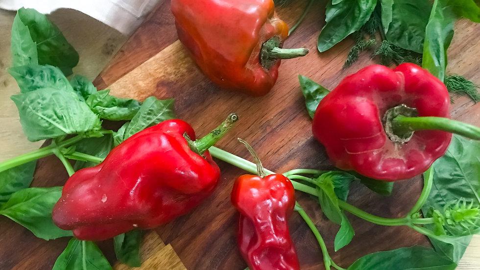 Organic Bell Pepper (200g)