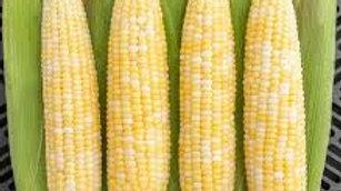 Organic Corn (500g)