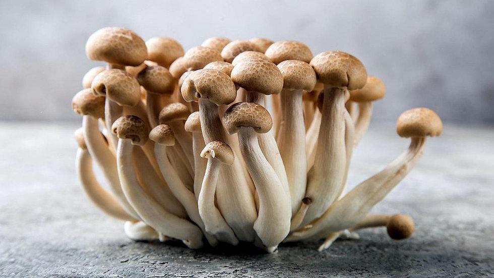 Organic Shimeji Mushroom (150g)