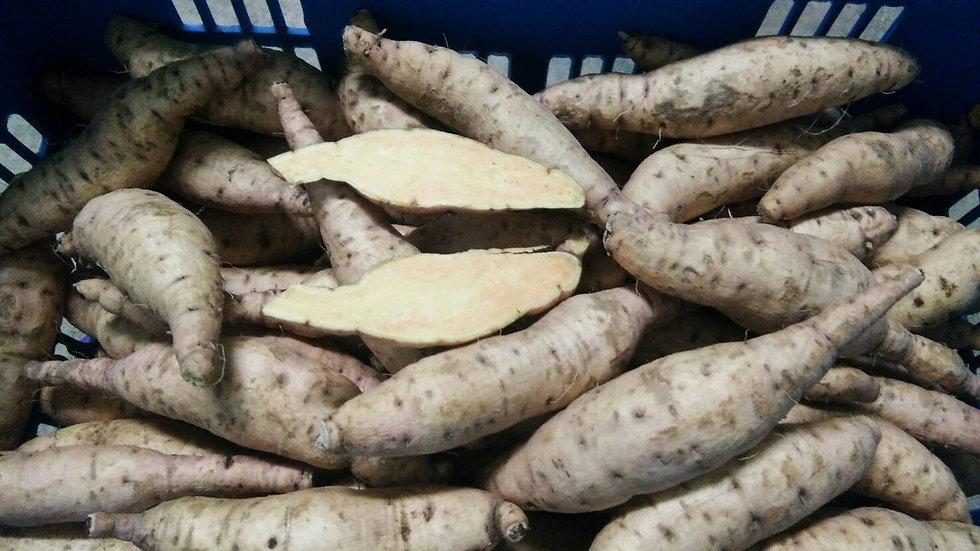 Organic Kuri Kokane Potato (500g)