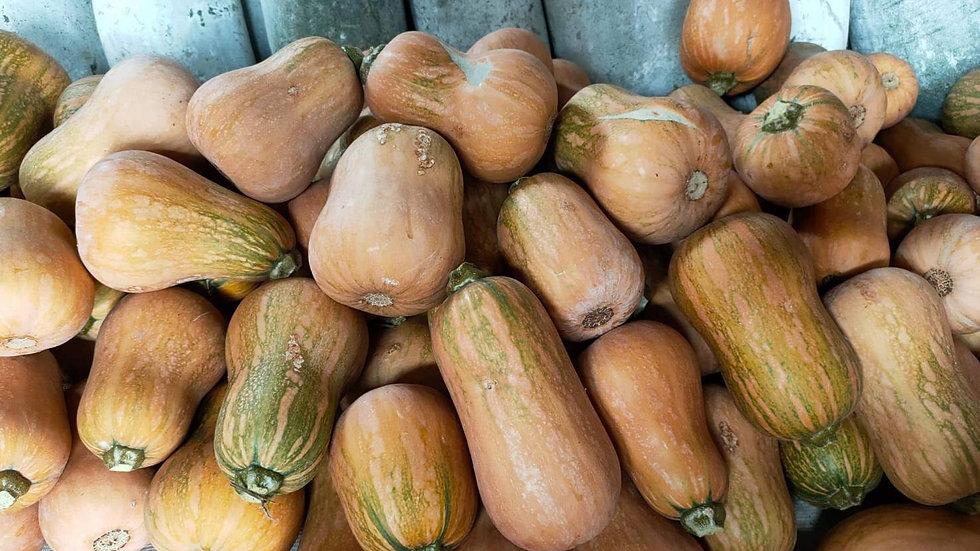 Organic Butternut Squash (400-500g)