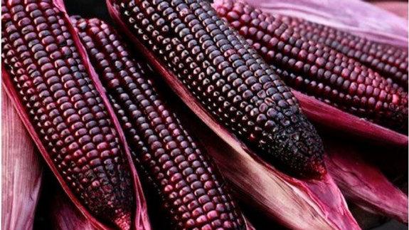 Organic Purple corn (400-500g)