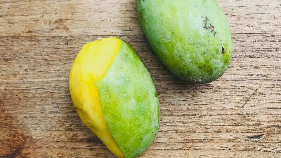 Organic Ok Rong Mango (2pcs/300g)
