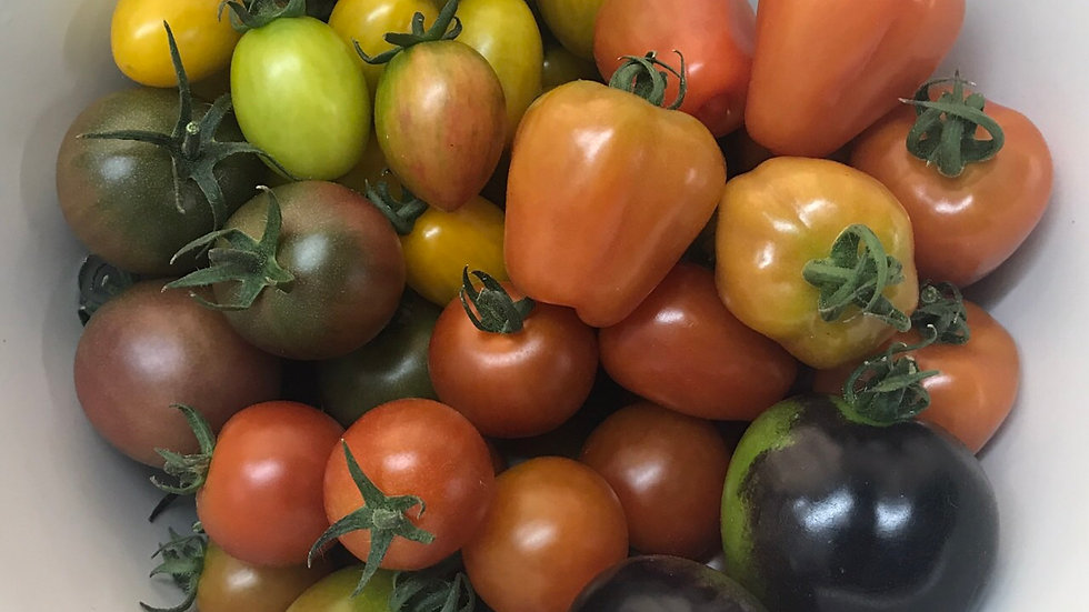 Tricolor tomatoes (200g)