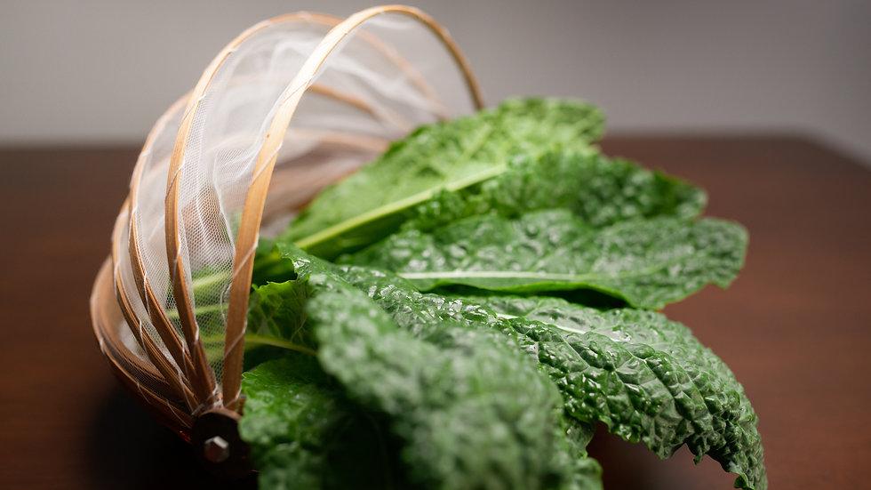 Organic Dinosaur Kale (100g)