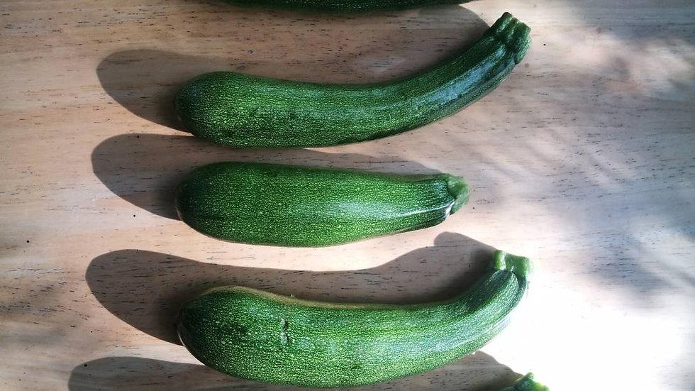 Zucchini (500-600g)