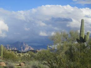 Kathryn Bechen Arizona Scenery