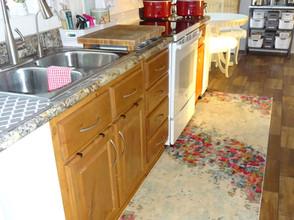 Kathryn Bechen kitchen rug.JPG