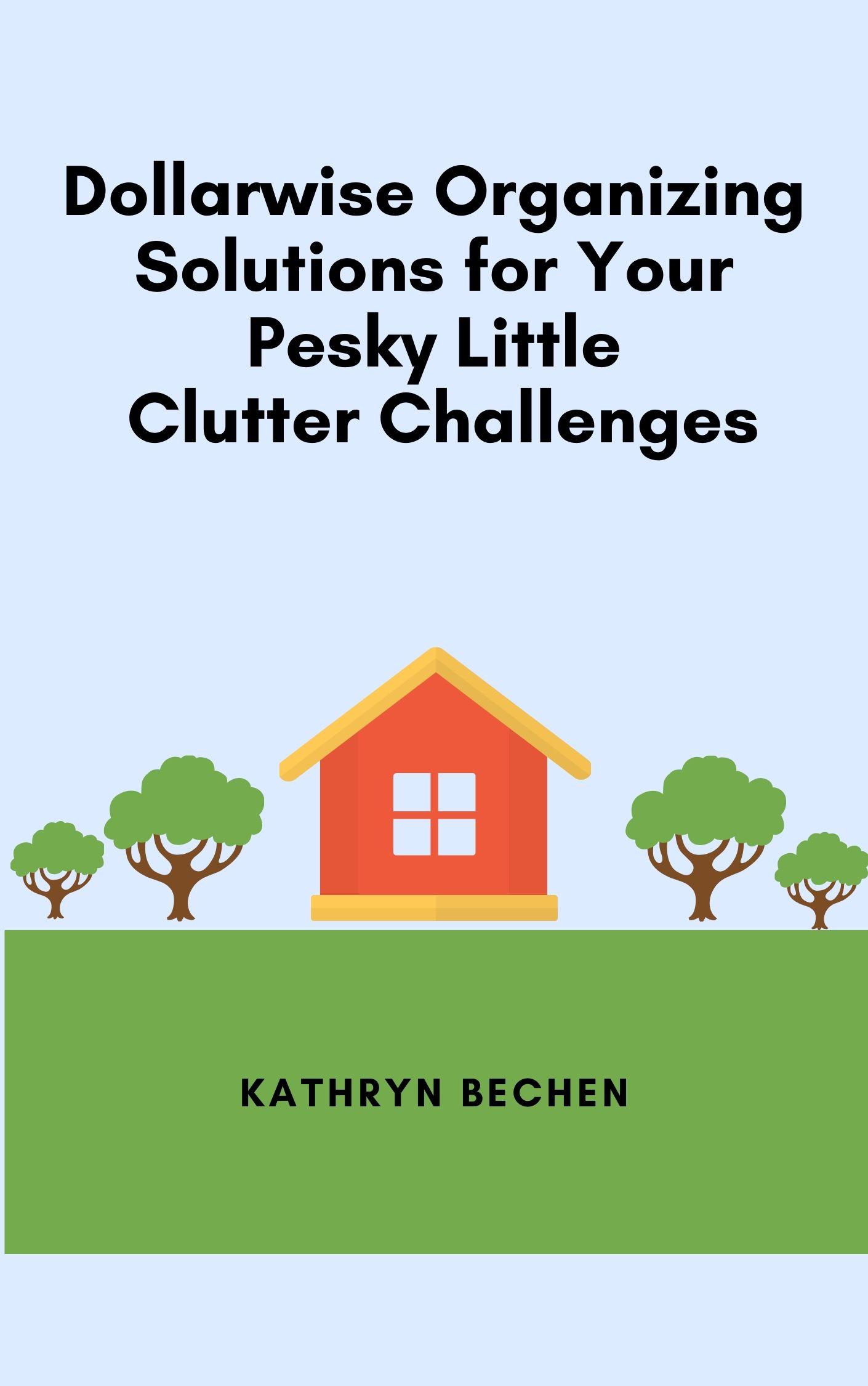 Dollarwise Organizing Solutions Kathryn Bechen