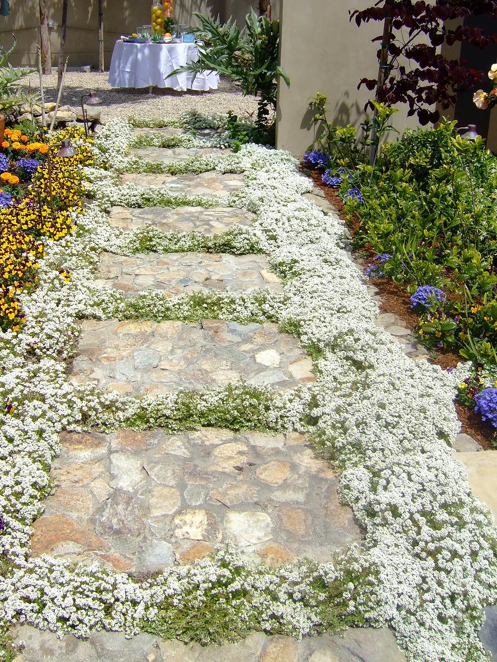Garden walk Southern California