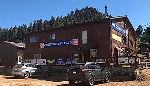 Pine - NEW PRICE! Pine Country Feed Store for SALE