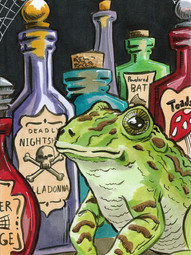 Toad and Potion