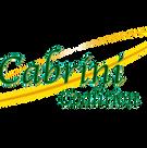 cabrini-coalition-transparent-logo (1).p