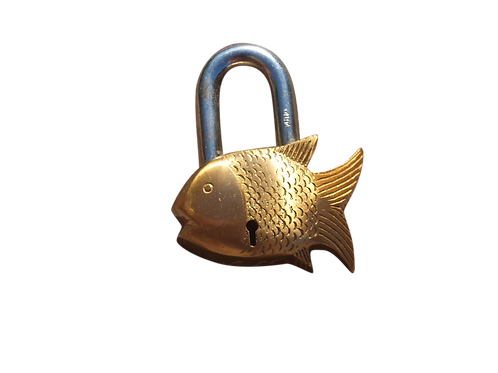 Zicc ® Lock small Fish