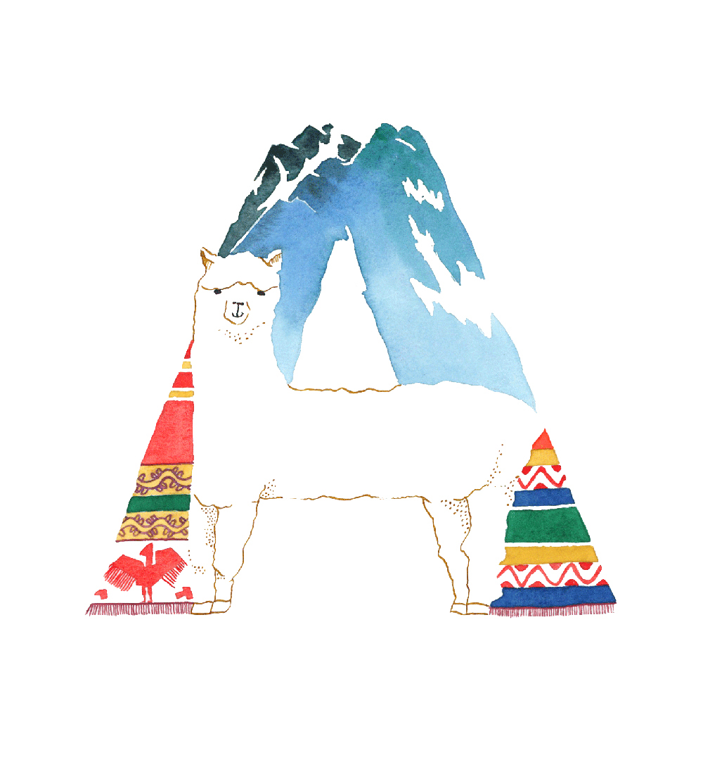 Alpaca.