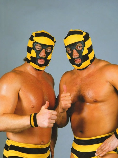 The Killer Bees (WWF)