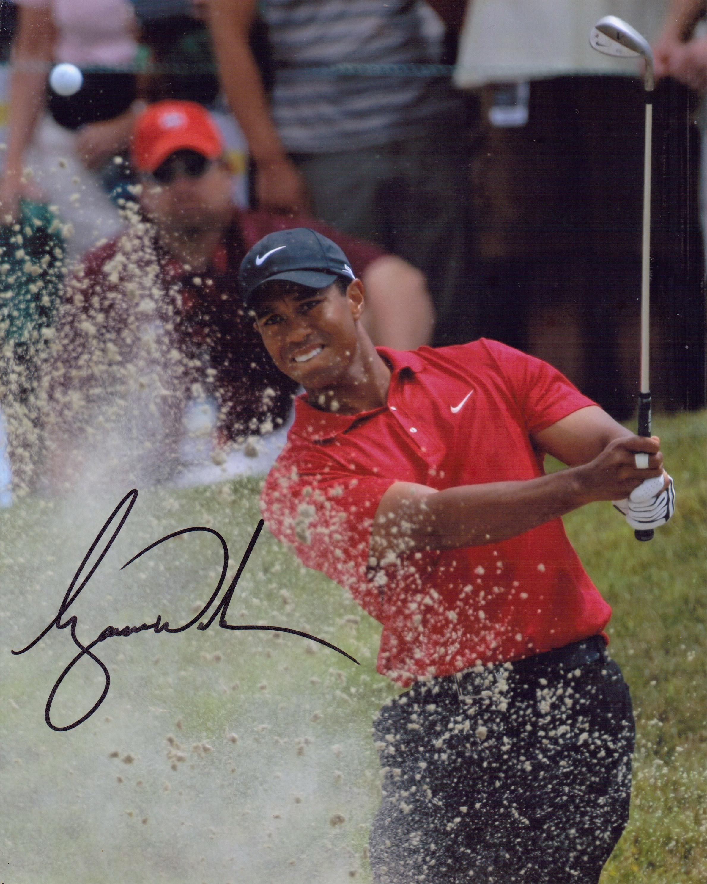 Tiger Woods (2)