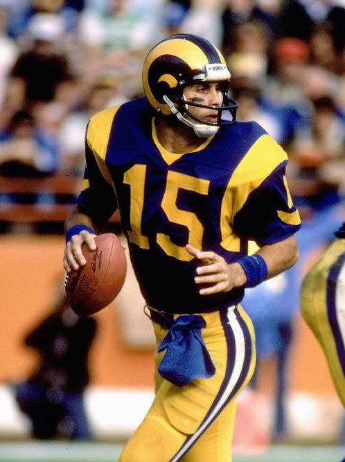 Vince Ferragamo (Rams, Bills, Packers)
