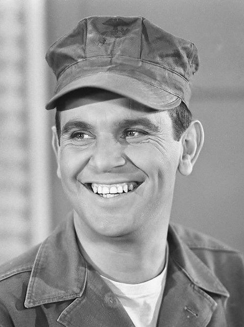 Ronnie Schell (Gomer Pyle, U.S.M.C.)