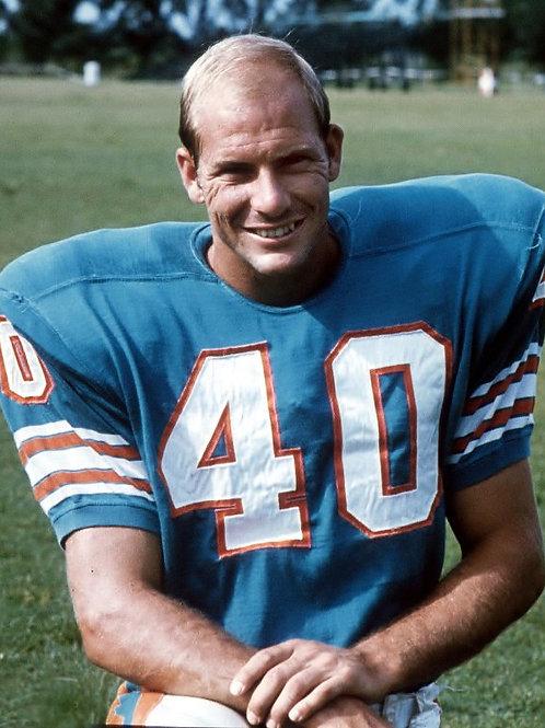 Dick Anderson (Miami Dolphins)