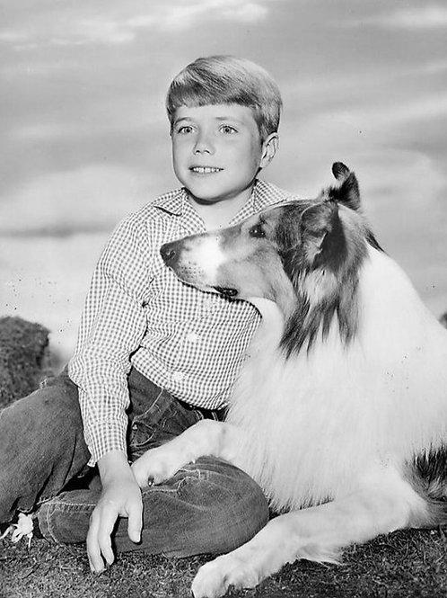 Jon Provost (Lassie)