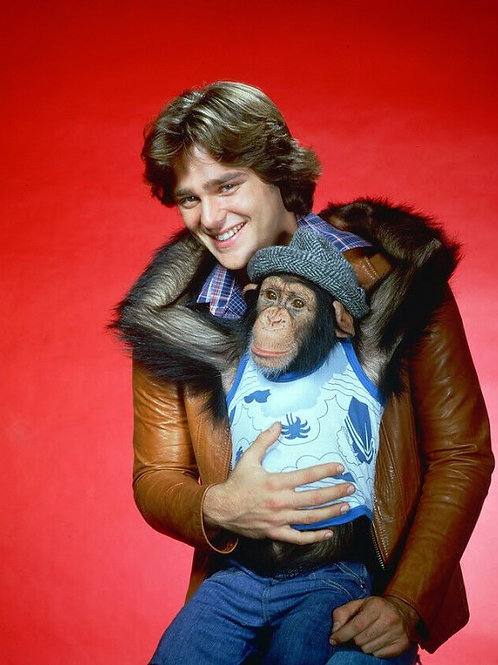 Greg Evigan (BJ & The Bear, My Two Dads)
