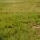 Thumbnail: Land at Lakowe, Lekki, Nigeria
