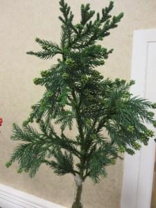 Ax-Arboreal-Chris-Sherrill-IMG_8481