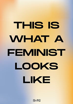 This is what a feminst looks like.png