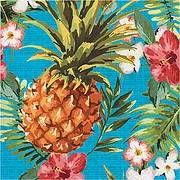 מסיבת רווקות בסגנון הוואי מושלמת! אצלנו תמצאו צלחות הוואי, כוסות הוואי, מפיות הוואי, מפת שולחן הוואי ועוד המון דברים שווים!