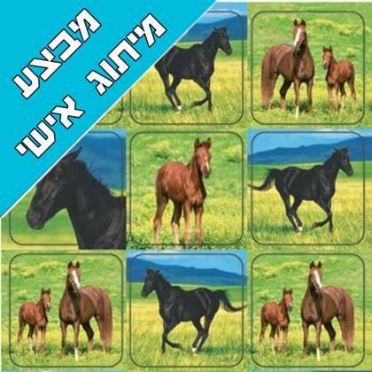 חבילת מיתוג אישי ליום הולדת סוסים