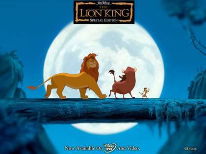 תמונה אכילה מלך האריות 16