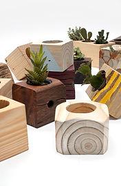 Cachepôs de madeira de diversos tamanhos