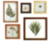 Barini_design_quadros_site5.jpg
