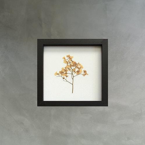 Q U A D R O  Orquídea 01