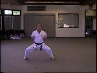 Position, Ready, Kiba Dachi Stance