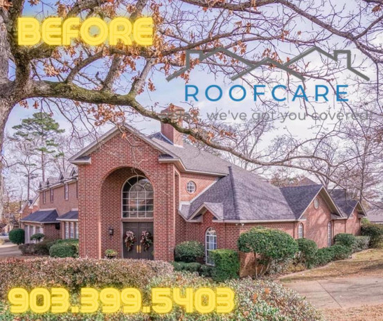 roof care website 22.jpg