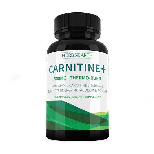 L-Carnitine+