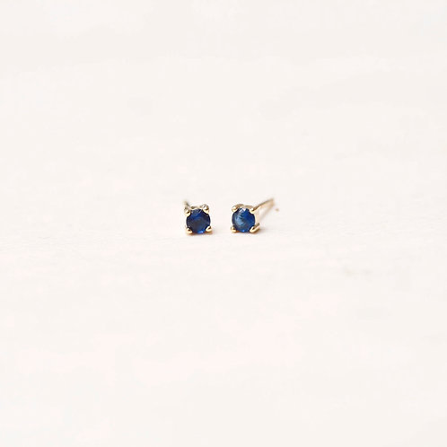 Color Sparkle Earrings