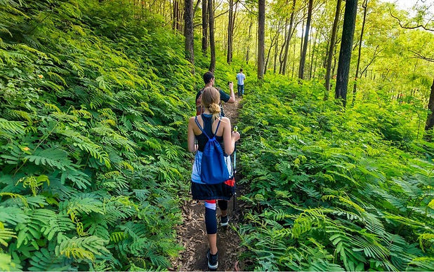 How-Forest-Bathing-Could-Improve-Your-He