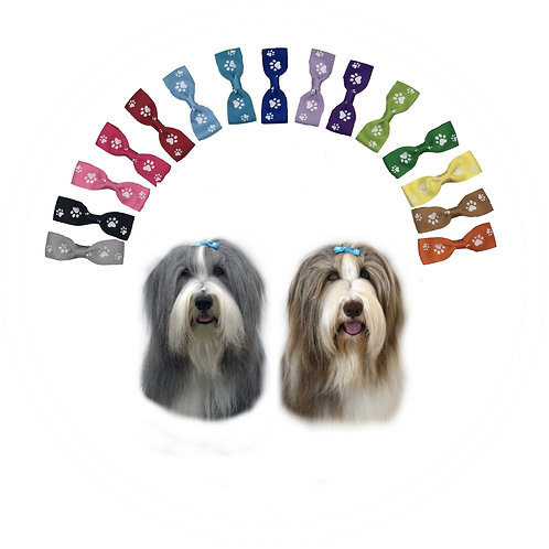 Full Range of 15 Coloured Ribbon Hair Bows with White Paw Print Pattern from Posh Pets Boutique