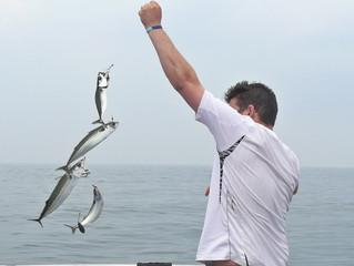 Summer Midweek mackerel trips