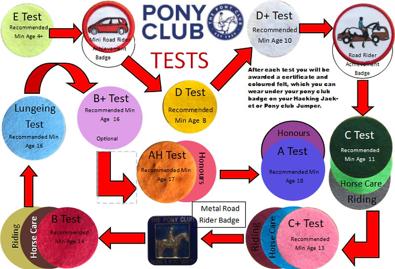 test overview.jpg